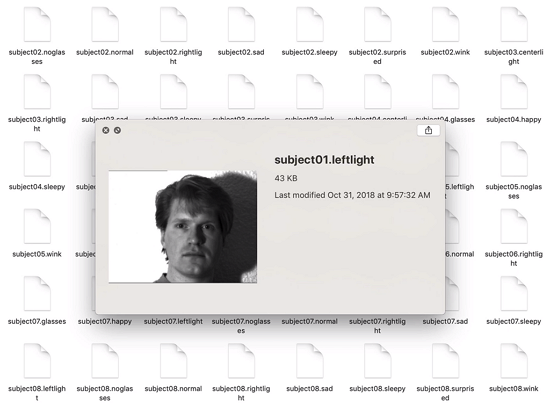 Subject01.leftlight from Yale Faces dataset